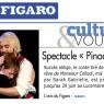 pinocchio presse 6